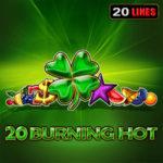 20 Burning Hot Logo