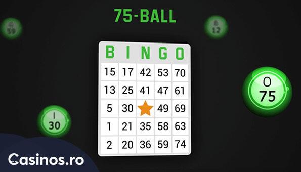 bingo pe casinos.ro