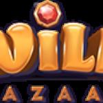 wild-bazar-cover